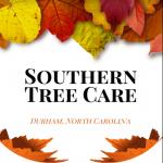 Tree Service Durham NC Logo
